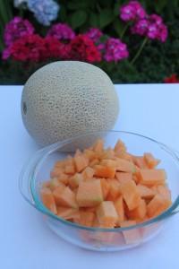 Cantalope