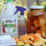 Citrus Vinegar Recipe