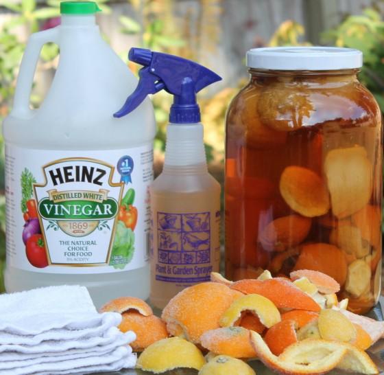 Citrus Vinegar Recipe